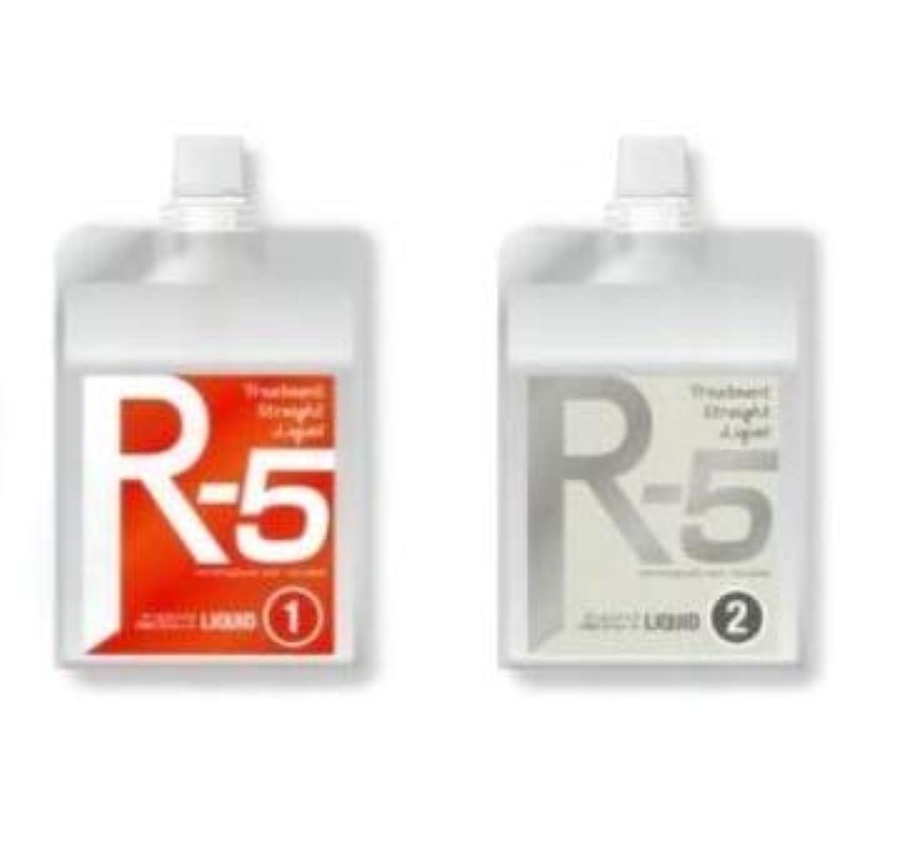 地下最大化する痛いCMCトリートメントストレート R-5 レッド(レギュラー) ストレート剤 ダメージレス