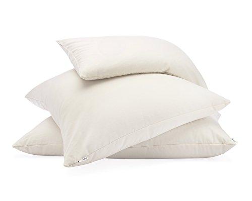 Hullo Buckwheat Pillow (King Size - 20x36)