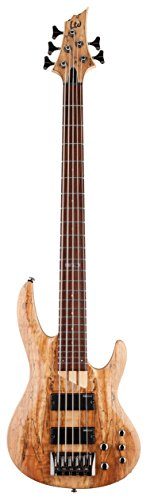 ESP LTD B-205SM FL Fretless Spalted Maple 5-String Bass Guitar, Natural Satin