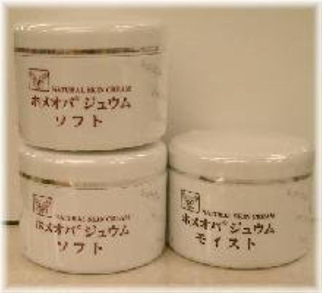 有益アーティスト生むホメオパジュウム スキンケア商品3点 ¥10500クリームソフト2個+クリームモイスト