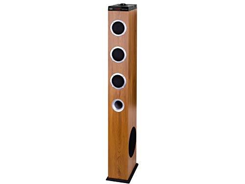 Trevi XT 10A8 BT Soundtower Lautsprecher mit 2.1 Turm verstärkt Color Legno