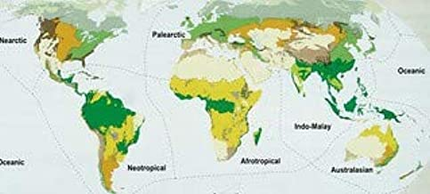 HistoricalFindings Photo: Image from Page 33 of Ecosystems and Human Well-Being: Biodiversity Synthesis