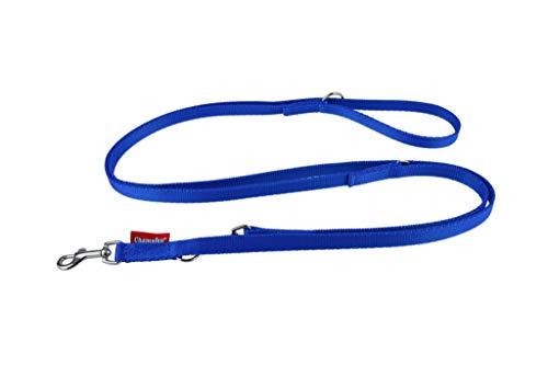 Kampioen/L&J Huisdieren UK Sterke Web Dubbele Afgesloten Politie Stijl Verstelbare Hond Training Lead, riem, 10mm XXS, Blauw