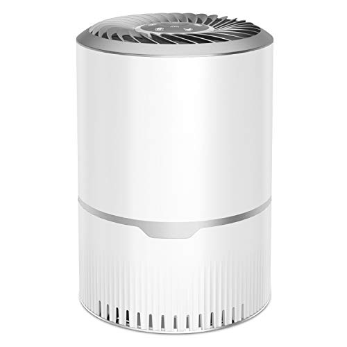 Luftreiniger mit HEPA- und Kohlefiltern, tragbarem Luftfilter, 3-Gang-Luftionisierer Entfernen Sie Staub, Pollen, Rauch, Gerüche und Hautschuppen für zu Hause