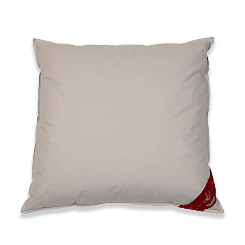 Traumschloss Comfort Daunen Kopfkissen | 60% Neue arktische Daunen und 40% Federn der Klasse 1 | 80 x 80 cm