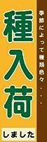 のぼり のぼり旗 花・園芸 送料無料(AG075 種入荷)