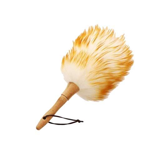 XKMY Cepillo de polvo ácaros del polvo Cepillo de limpieza de plumas para escoba Ventiladores Persianas
