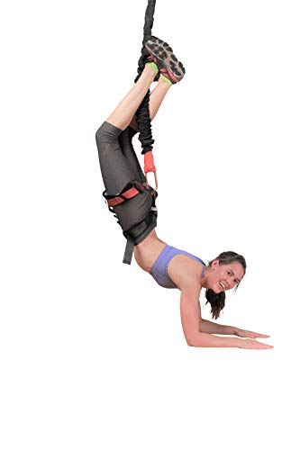 Uplift Active Bungee Fitness Set - Suspension Training for Bungee Dance, HIIT Training, Inversion Therapy with Padded Harness (X-Large)