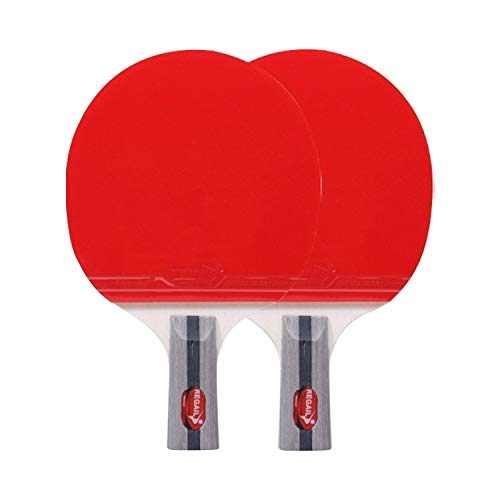 Why Choose XUE XUEJIONG REGAIL 8020 2 in 1 Short Handle Penhold Ping Pong Racket + Ping Pong Ball Se...