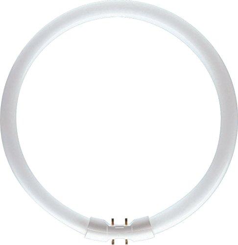 Philips lampe fluorescente TL5 C 22-Watts PRO lumière blanche naturelle (840)