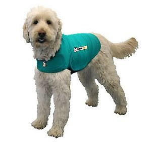 ThunderShirt Classic Dog Anxiety Jacket, Kelly Green, Large