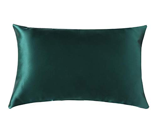 22 Momme Funda de Almohada con Cremallera de Seda 1pc 100% Nature Mulberry Silk Muticolor Funda de Almohada para una Reina estándar Saludable King-Green, 51x91 cm