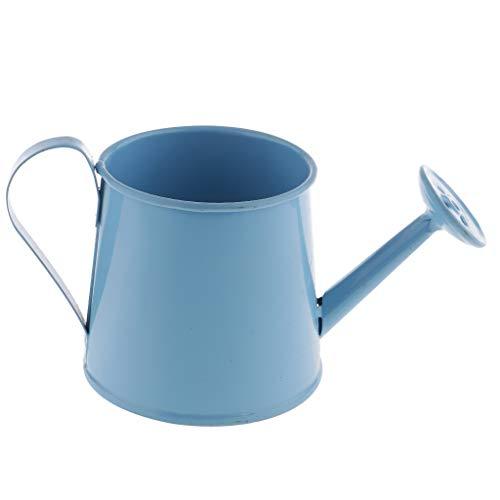 FITYLE Pastorale Style Coloré Tin Pot De Fleur Mini Bonsaï Arrosoir Pot Plantes Succulentes Vase Décor - Bleu