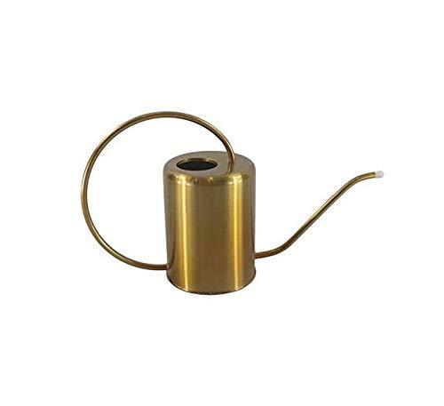 Cratone Gießkanne 2000ml Edelstahl Metall Blumengießkanne Gold Giesskanne Gartengießkanne Mit Langen Hals für Familie Büro Topfpflanzen Bonsai.2L