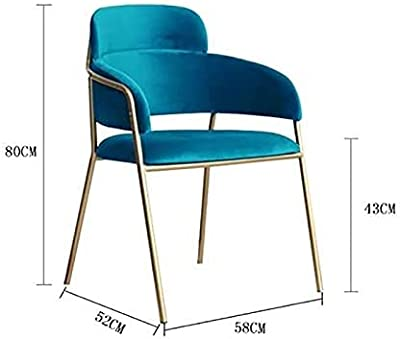 AKECTYT Metal Wrought Iron Dining Chairs, Modern Style Dining Chair Velvet Leisure Chairs with Sturdy Metal Legs for Kitchen, Dining, Bedroom, Living Room,Pink (Color : Lakeblue)