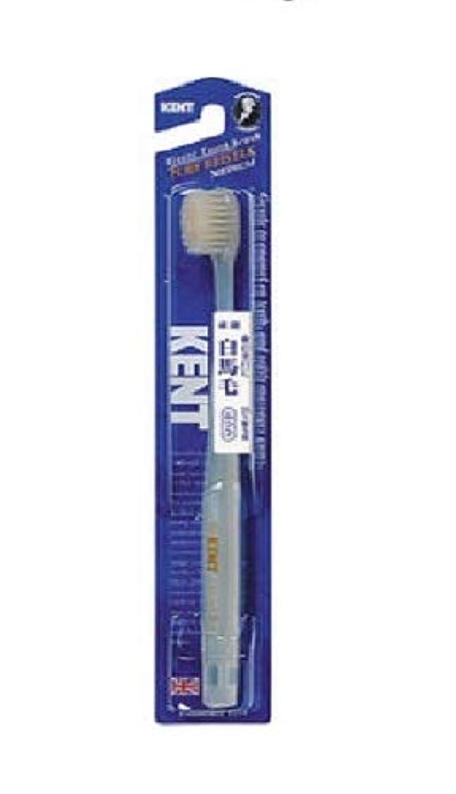 おとうさん巨大適合KENT 白馬毛歯ブラシ ふつう コンパクトヘッド KNT-1232