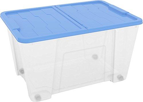 DEA HOME Z521M091 Contenitore Master Box, 50 Lt, Trasparente/Blu