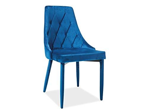 LUENRA - Juego de 2 sillas de comedor, 88 × 46 × 46 cm, traje de mesa acolchado de tela de terciopelo y patas de metal, color azul marino