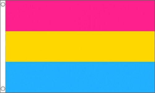 5 ft x 3 ft (150 x 90 cm) pansexual Pride 100% Polyester Material Flagge Banner Ideal für Pub Club Festival Business Party Dekoration
