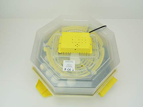 Campo24 C4 Inkubator/Incubator/Incubatrice/Brutmaschine/Brutapparat/Couveuse/Motorbrüter