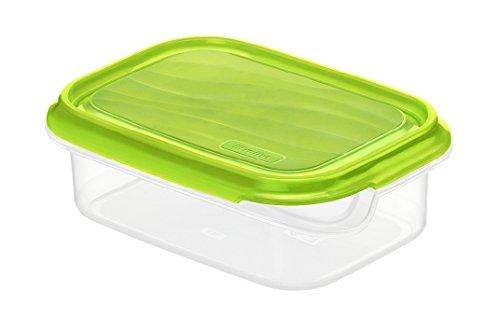 Rotho Rondo Frischhaltedose 0.5 l, Kunststoff (BPA-frei), grün / transparent, 0.5 Liter (16 x 12 x 5,3 cm)