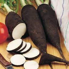 Risitar Graines - 100pcs Rare Radis rave Noir gros long d'hiver de Paris, Graines de légumes résistante au froid