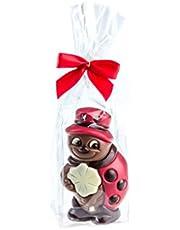 Mariquita con trébol de chocolate - 60 g