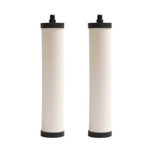 Franke Undersink Water Filtration Chlorine Removal for FRX Canisters (2 Pack)