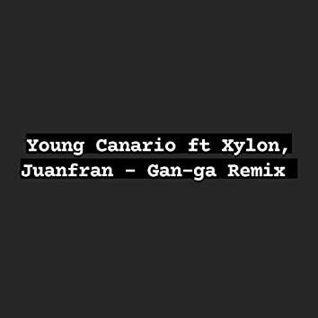 Gan-ga (Remix)
