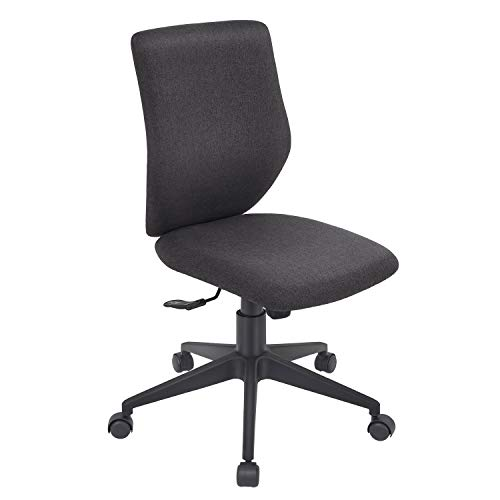 Bowthy Armless Desk Chair Ergonomic Office Chair Computer Task Chair Without Arms Mid Back Fabric 360 Swivel Chair (Black)