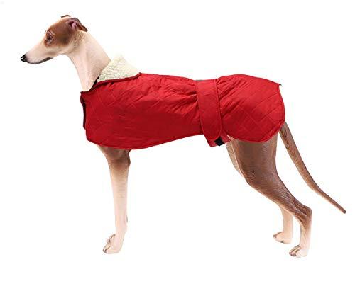 Morezi Abrigo de invierno para perro con forro polar cálido, abrigo impermeable con bandas ajustables para galgos, lurchers y Whippets – rojo – XXXL