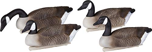 Flambeau Outdoors 8091SHU Storm Front 2 Canada Goose Decoy, Classic Floaters - 4-Pack