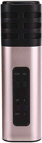 ZYF Micrfono Karaoke Micrfono de aleacin de aleacin porttil Profesional Micrfono de Canto mvil para la reunin de grabacin en Vivo de transmisin (Color: C) (Color : #1)