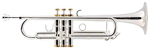 Lechgold TR-18S Bb-Trompete - aus Messing - Mundrohr aus Phosphorbronze - Edelstahl-Ventile - inkl. Leichtkoffer - versilbert