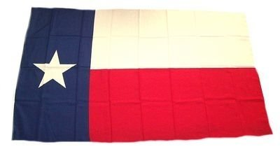 Fahne / Stockflagge USA - Texas 30 x 45 cm Flagge