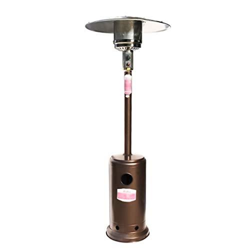 ADKINC Calentador, Calentador de Gas - Calentador Ajustable de 10,000 BTU, Gas Natural/Gas licuado