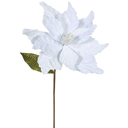 Vickerman QG162701 Poinsettia with 12' Flower Head & Paper wrapped wire Stem in 6/Bag, 22', White