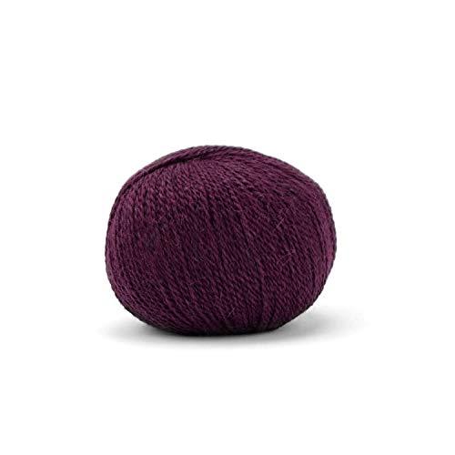 Pascuali Balayage Strickgarn aus 80% Alpaka Wolle (Babyalpaka), 20% Schurwolle (Bio Merino Extra fine, Mulesing frei)) 50g, Wolle zum Stricken, Farbe:Lima 605