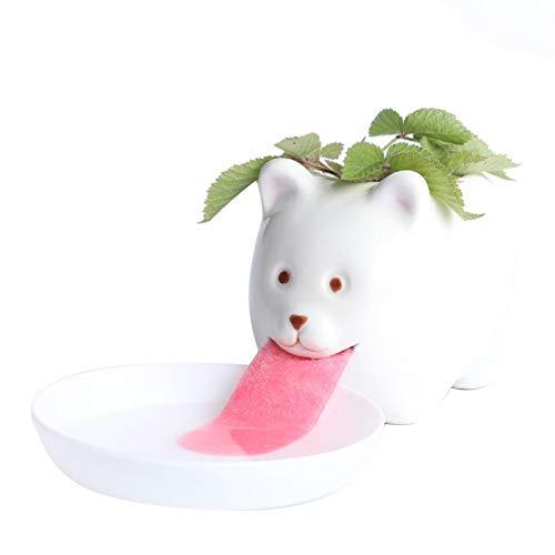 SNOWINSPRING Macetas de Flores para Plantas, Riego AutomáTico de Bricolaje, Macetas de Hierba de Escritorio de Animales Macetas de Oso Blanco