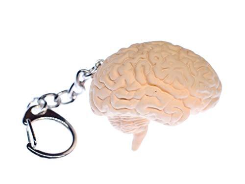 Miniblings Cerebro llaveros Llavero Cadena Organ Human Anatomy