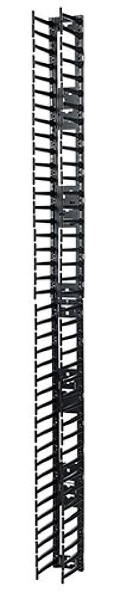 シュナイダーエレクトリック Vertical Cable Manager for NetShelter SX 750mm Wide 42U (Qty 2) AR7580A