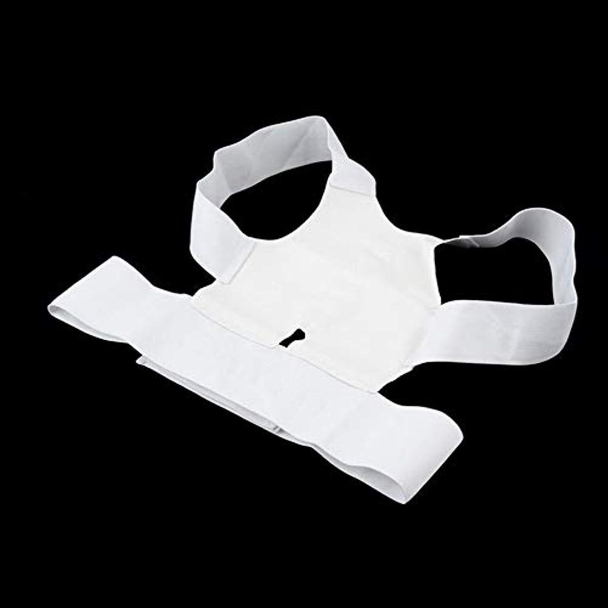 死にかけている最初に通り抜ける病気から白い快適な磁気姿勢サポートコレクター腰痛ベルトブレース肩リリース痛み(Color:white)