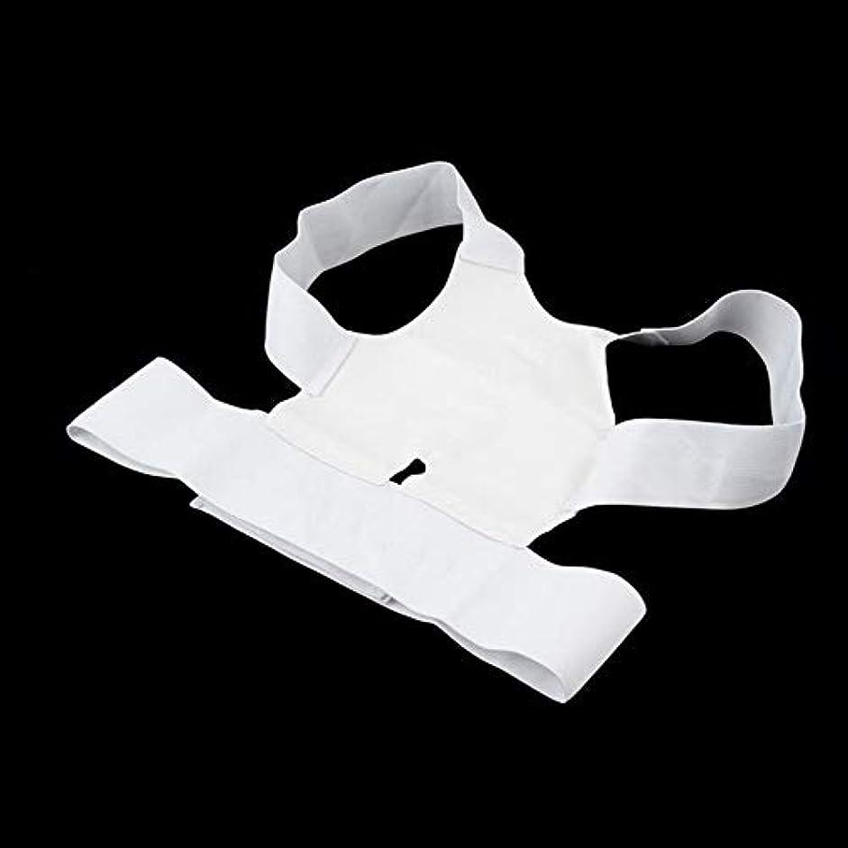 反発する遠征審判病気から白い快適な磁気姿勢サポートコレクター腰痛ベルトブレース肩リリース痛み(Color:white)