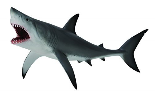 CollectA Sea Life Great White Shark Open Jaw Toy Figure - Authentic Hand Painted Model