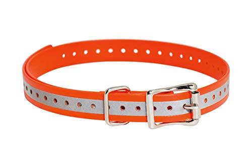 SportDOG Brand 3/4 Inch Collar Strap
