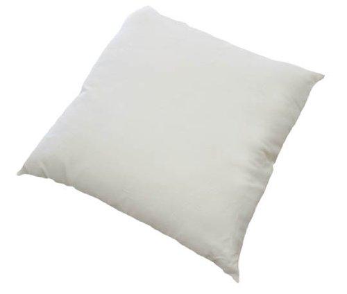 LIFEKIND Certified Organic Wool Euro Square Pillow, 26 x 26 Inches