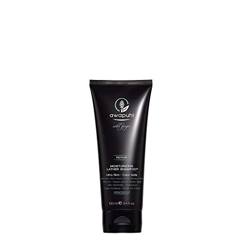 Paul Mitchell Awapuhi Wild Ginger Moisturizing Lather Shampoo - Feuchtigkeits-Shampoo für trockenes, strapaziertes Haar, Haarpflege in Salon-Qualität, 100 ml