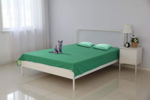 Silly Legacy Thin Reversible Waterproof Protective Cover or Liner for Bed or Couch, for Dogs and Cats (Queen 82 x 78, Green)