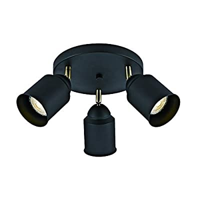 Addington Park 31806 Rae Collection 3 Industrial Canopy Light, Medium, Matte Black