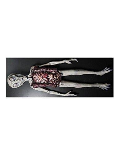 Price comparison product image Alien Autopsy Foam Latex Tabletop Two Piece Halloween Decoration Prop Décor